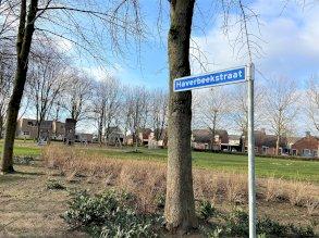 Haverbeekstraat 19, Echt